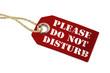 canvas print picture - Anhänger mit Do Not Disturb