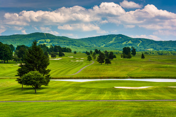 View of a golf course and distant mountains at Canaan Valley Sta