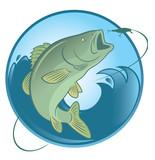 fish bass