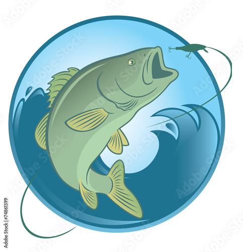 fish bass - 74861399