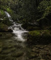 Nacedero del Rio Cadagua