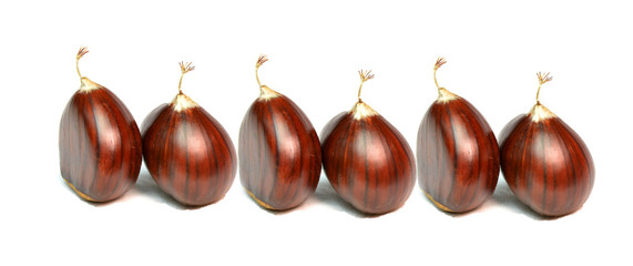 chestnut in line like soldiers , chesnut isolated details