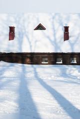 雪にうつる影