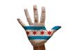 palm flag chicago
