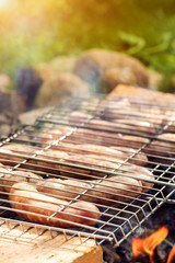 Appetizing Sausages Grilling