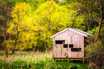 Bird blind and spring color at Wildwood Park in Harrisburg, Penn