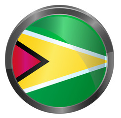 Guyana metallic button flag