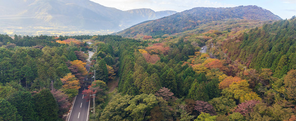 Panaroma of beautiful forest of autumn leaves in Hakone
