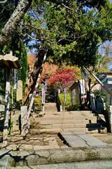 鎌倉杉本寺の入り口