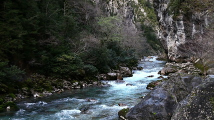 The mountain river in the gorge