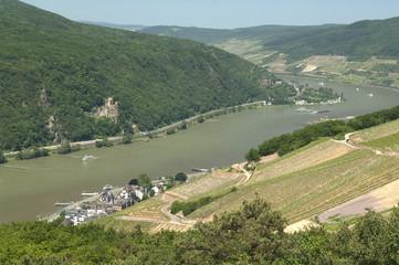 Assmannshausen, Burg, Rheinstein, Blick; Rhein;