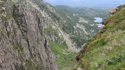 Alpine landscape in Karkonosze/Krkonose mountains