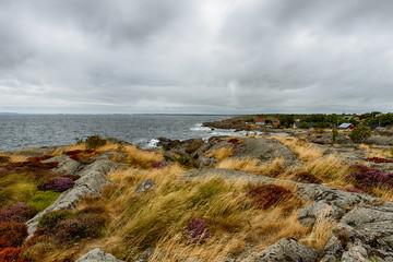 Swedish Bay