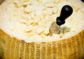 Parmesan cheese (head) close with knife.