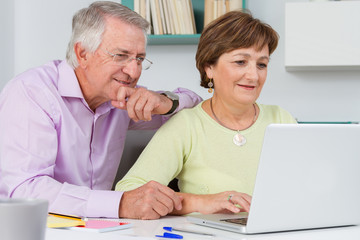 Seniors couple using a laptop computer