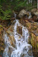 Natural water runoff near Camden, Maine
