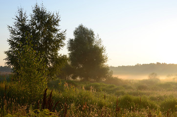 August morning