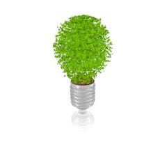 Lightbulb_leafs_dirt