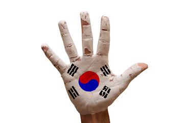palm flag south korea
