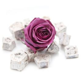rose et plantes séchées