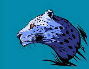 Jaguar in the light of the moon.