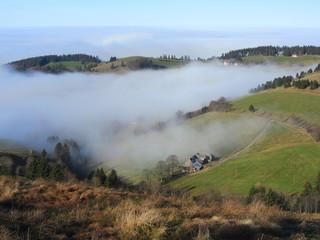 Bergland im Nebel