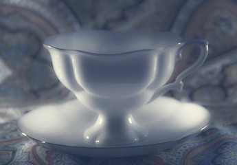 White porcelain cup with saucer in dark sepia
