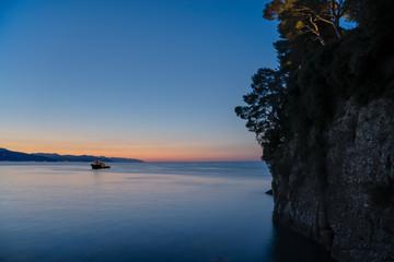 Pine tree rock in Portofino park, Italy