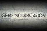 gene modification poster