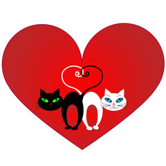 Red heart, black cat and white cat