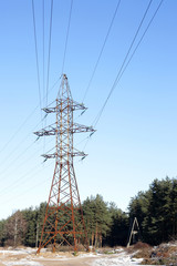 electricity power pole woods high voltage