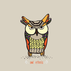 bright ethnic owl