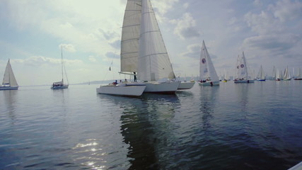 Trimaran in the open sea, many sailing yachts, regatta, sports