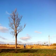 Autumn cyclist