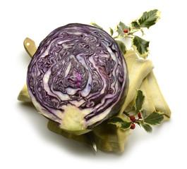 Brassica oleracea Red cabbage Rotkohl Expo Milan 2015 food