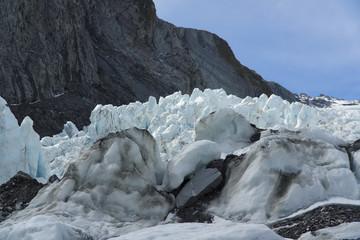 Franz Josef Glacier. New Zealand.