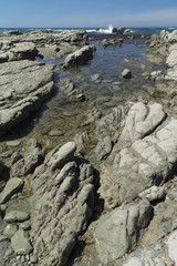 Rocky coast in Kaikoura, New Zealand