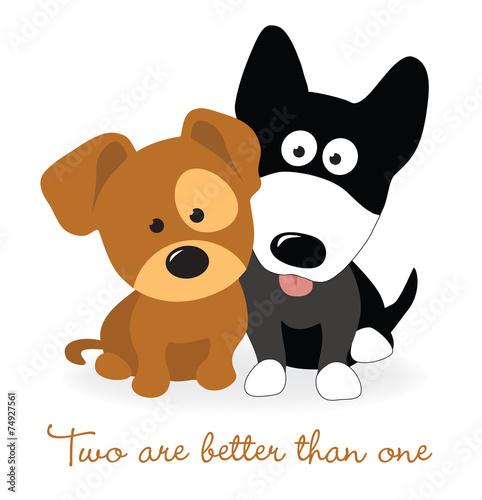 Fototapeta Best friends - two puppies