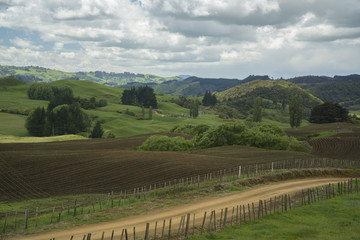 Farmlands. New Zealand