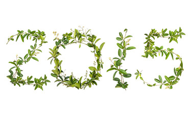 2015 word of creeper flower