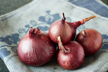Five onions on the linen background