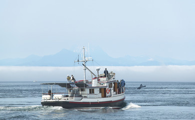 Whale watching boat in Vancouver. British Columbia. Canada