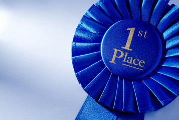Blue 2nd place winners rosette