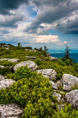 Boulders and view of the Appalachian Mountains from Bear Rocks P