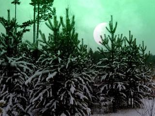 Природа ночь
