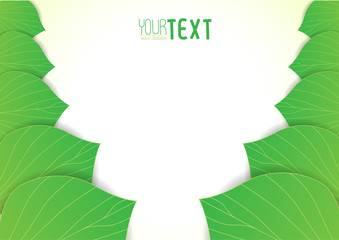 Background text leaves v1