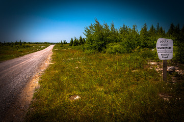 Dirt road through the high plateau of Dolly Sods Wilderness, Mon