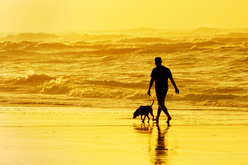 person walking the dog on beach