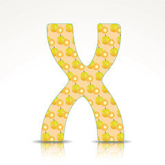 The letter X of the alphabet made of Ximenia