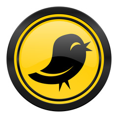 twitter icon, yellow logo,